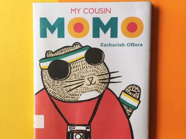 my-cousin-momo-book-3